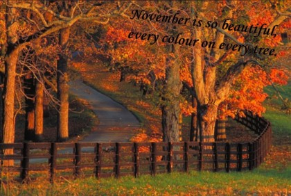 november-fall-sjh1